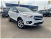 2017 Ford Escape SE (Stk: B8052) in Saskatoon - Image 1 of 11