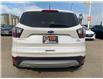 2017 Ford Escape SE (Stk: B8052) in Saskatoon - Image 5 of 11