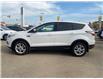 2017 Ford Escape SE (Stk: B8052) in Saskatoon - Image 7 of 11