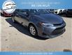 2017 Toyota Corolla CE (Stk: 17-99096) in Greenwood - Image 4 of 17