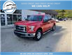 2017 Ford F-150 XLT (Stk: 17-98527) in Greenwood - Image 2 of 19