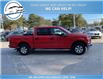 2017 Ford F-150 XLT (Stk: 17-98527) in Greenwood - Image 5 of 19