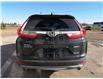 2019 Honda CR-V Touring (Stk: B0247) in Humboldt - Image 6 of 20